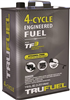 Fuel 4-Cycle Ethanol Free 110OZ 6527206 0