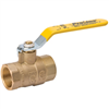 "Ball Valve Brass 2.00"" 107-828/M100-2 0"