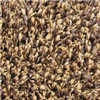 Carpet-Ftx6' Brn/Tan Value Grass Turf 0