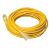 Extension Cord 12/3 Yellow 25'  025878802 0