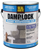 Paint Waterproof Damplock 1Gal 101001 0