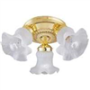 Light Fixture Ceiling Polish Brass 3-Lite F6Bb03-22013L 0