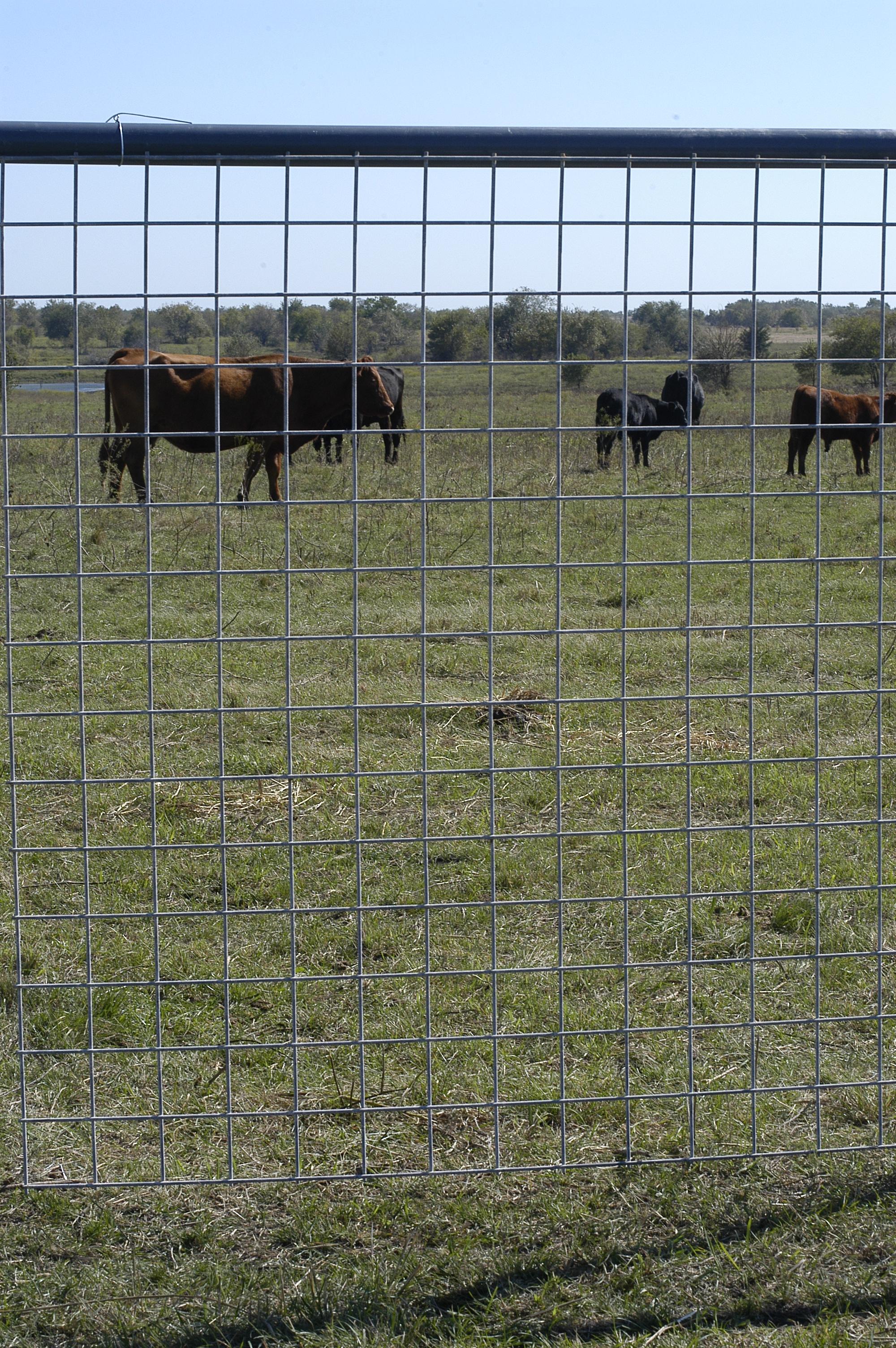Fencing mg building materials supply texas