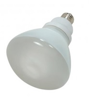 Flood & Spotlight Bulbs